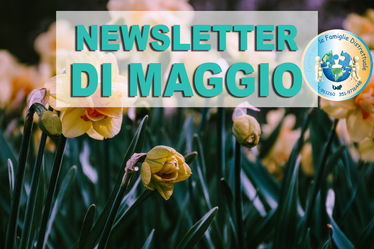 newsletter MAGGIO.png